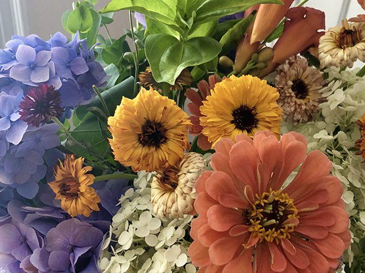 Tmx Img 6805 51 1988763 160095529034518 Oneco, CT wedding florist