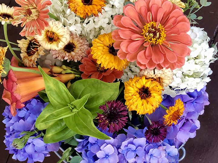 Tmx Img 6809 51 1988763 160095529581143 Oneco, CT wedding florist