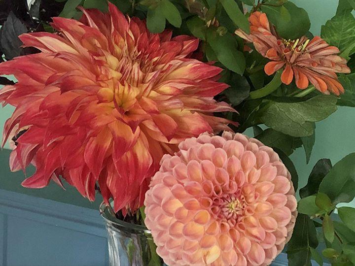 Tmx Img 8097 51 1988763 160095531373784 Oneco, CT wedding florist