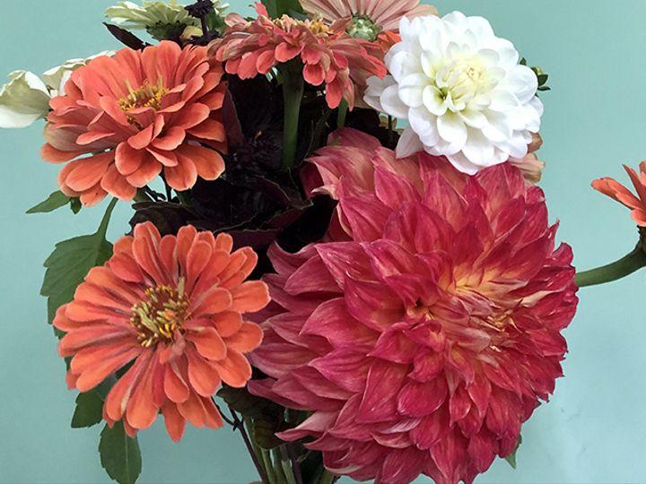 Tmx Img 8124 51 1988763 160095530718598 Oneco, CT wedding florist