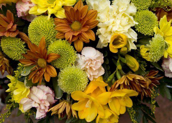 Tmx 1228190572371 CopyofiStock 000004064667Medium Deerwood, MN wedding florist