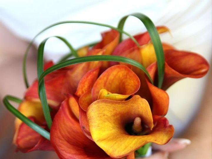 Tmx 1228190802887 ISTOCKPHOTOS051 Deerwood, MN wedding florist