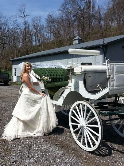 Bride by the carriage