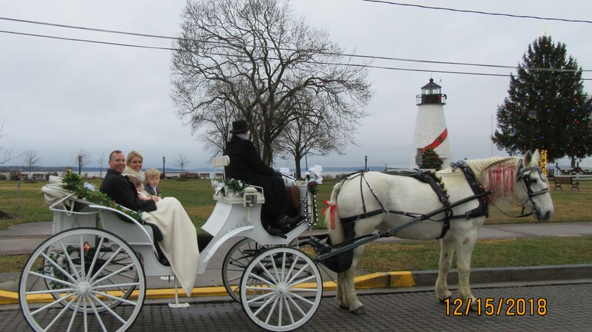 Newlyweds' carriage ride