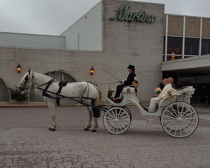 Carriage of the newlyweds