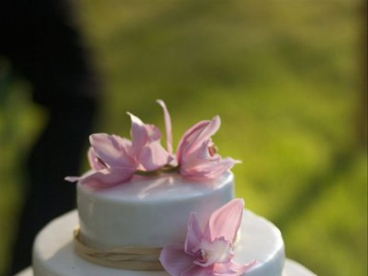 Tmx 1263577709701 ErinVincent1036 Hillsborough, NC wedding cake