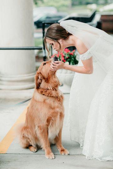 Best Pup