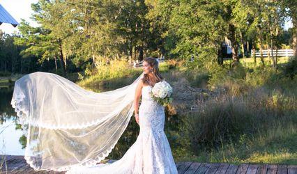 Dream Weaver Photos