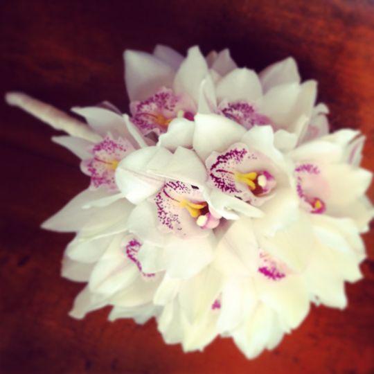 Moth orchid bouquet