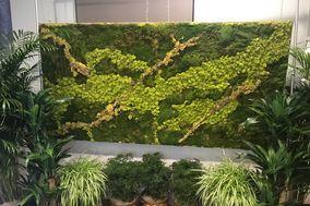Ambiance Plant Rentals