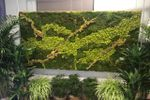 Ambiance Plant Rentals image