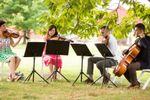 Sage String Quartet image