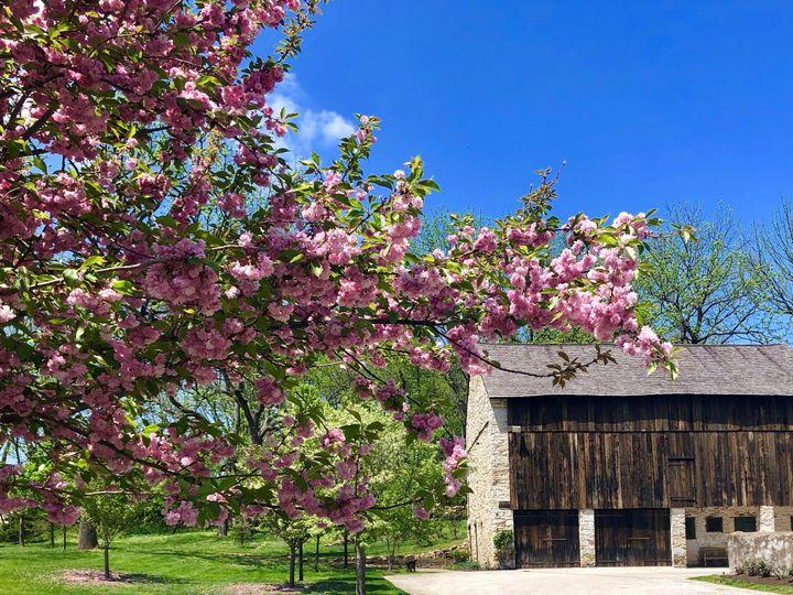 Tmx Federal Barn In Spring 51 110073 Wayne, PA wedding venue