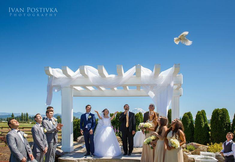 Dove release - Ivan Postivka Photography