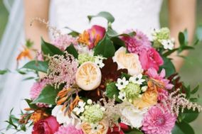 philippa tarrant custom floral llc