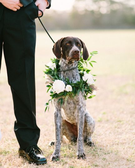 Ready for the walk down the aisle