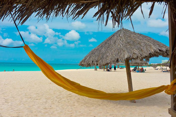 Tmx 1448386388587 Travel What Clients Are Saying Aruba East Brunswick wedding travel