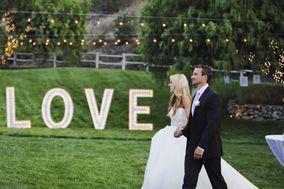 Lace & Lavender Wedding Coordinating