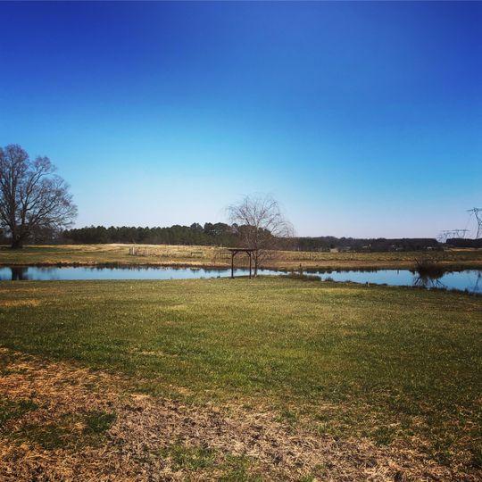 Pond view!