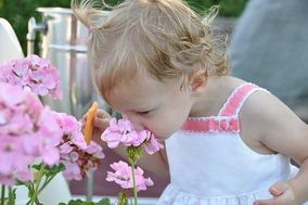 Mamaroneck Flowers