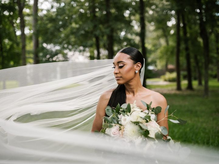 Tmx Bridals Tyra 103 51 1247473 157740730255762 Houston, TX wedding photography