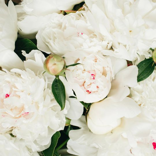 Gorgeous florals
