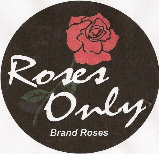 RosesOnly2