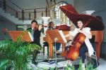 MS Music  Studios image