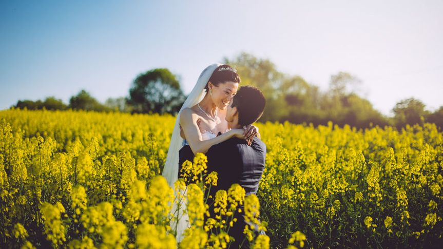 800x800 1516142098 ddca656372827026 1516142097 5804c593bce013d3 1516142097864 2 yellow fields wedd