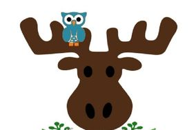 The Moose and Owl