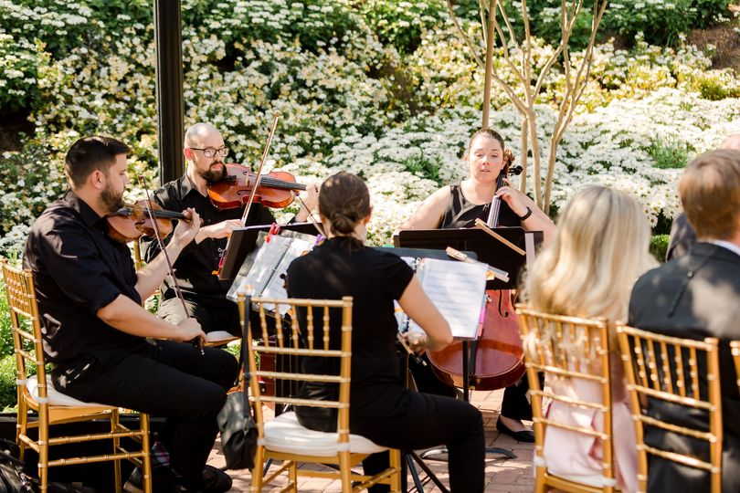 The quartet playing at a wedding