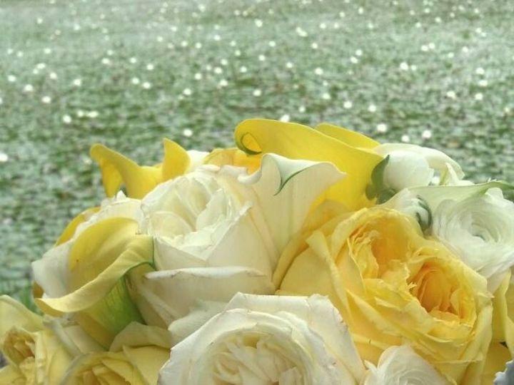 Tmx 10525899 333603286797970 2144587097378973172 N 51 712873 157664317454756 Albrightsville, PA wedding florist