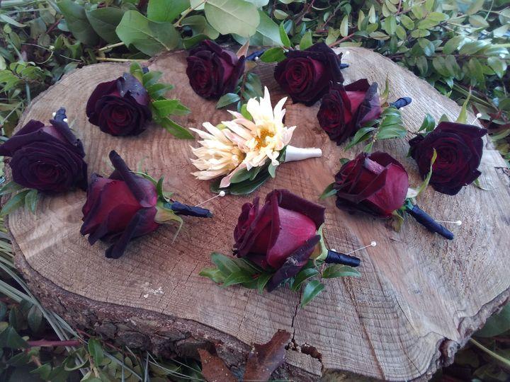Tmx Img 20191101 123843 51 712873 157395358340550 Albrightsville, PA wedding florist