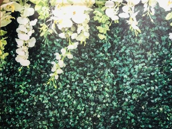 Foliage backdrop