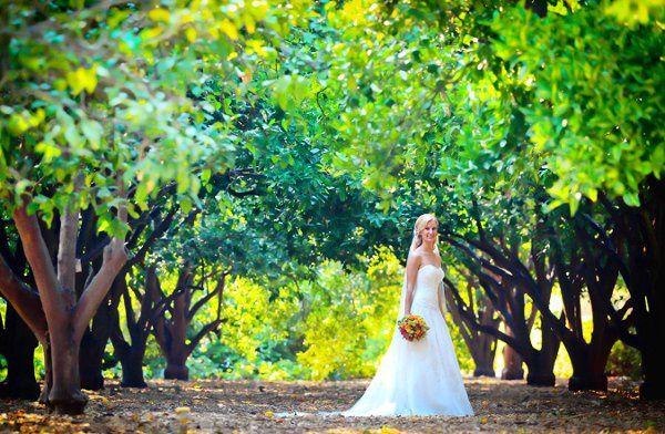 Tmx 1319068750069 1298 Torrance, CA wedding photography