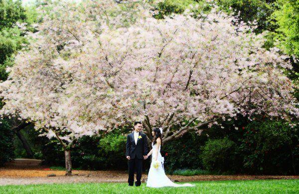 Tmx 1319069302044 4047 Torrance, CA wedding photography