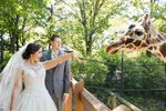 Blank Park Zoo image