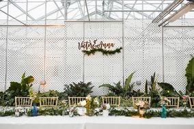 Natalie Diener Weddings and Events