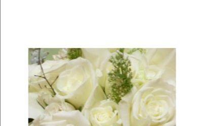 Twigs, Leaves & Flowers 1