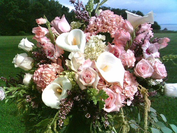 Floral Designs by Mary-Ruth Chapin