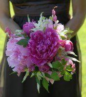 Tmx 1254854758066 1 Cockeysville, MD wedding florist