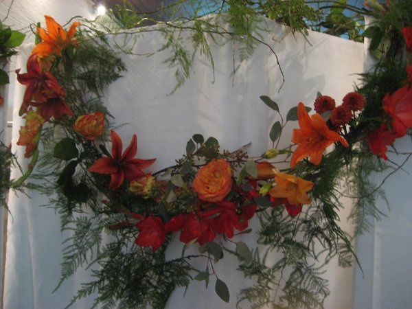 Tmx 1281381843814 IMG3585 Cockeysville, MD wedding florist