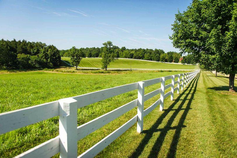 Large lawn view