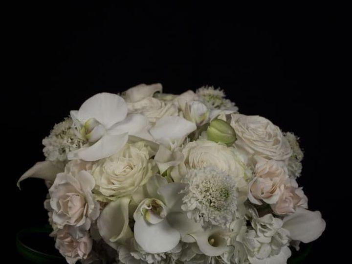 Tmx 50600965 10156454750912017 3210696690386337792 N 51 1040183 Wolcott, CT wedding florist