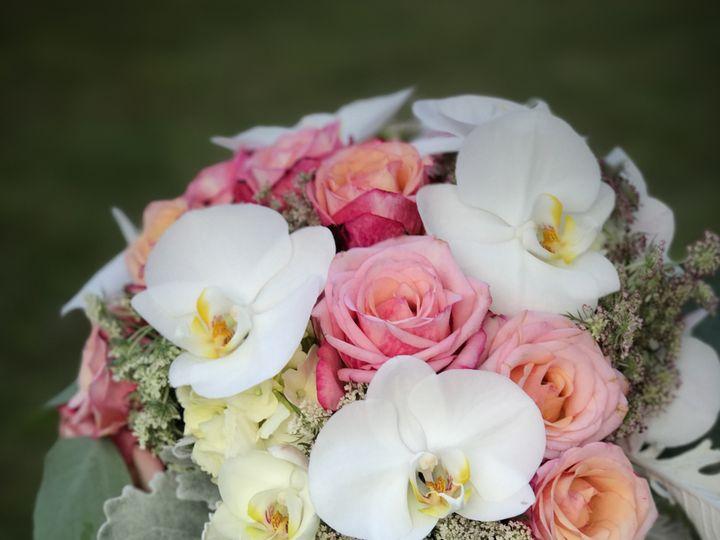 Tmx Img 9658 51 1040183 Wolcott, CT wedding florist