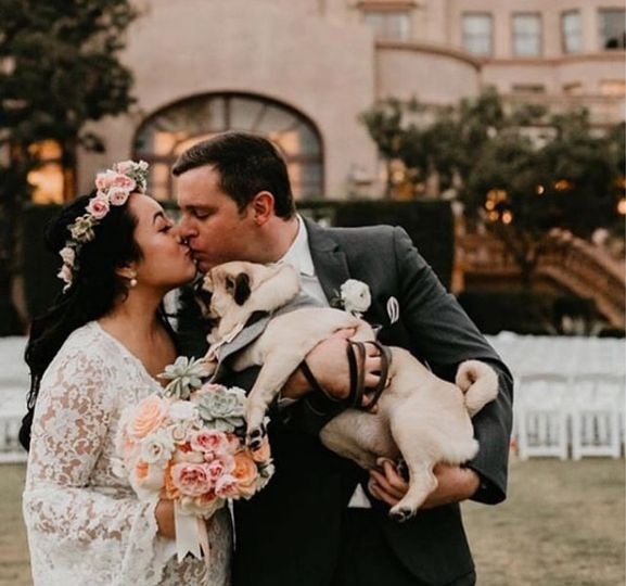 puppy love wedding hair styling 51 1943183 159467266748945
