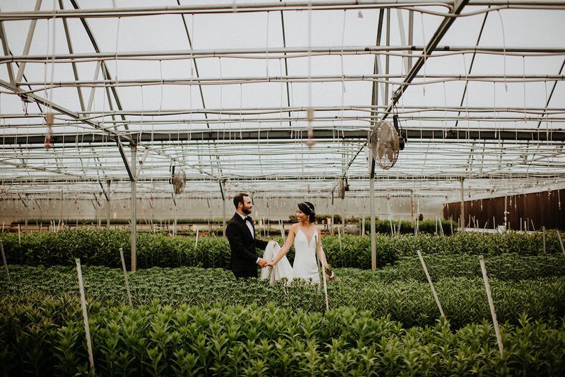 Greenhouse filled with lilies