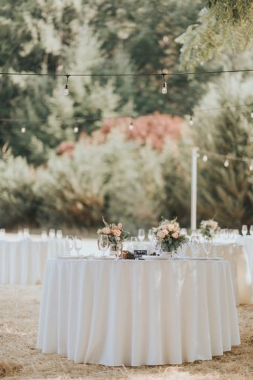 Reception in the meadow