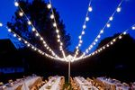 American Party Lights image