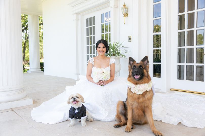 sandra bridal portraits 2019 1340 51 353283 1566234052